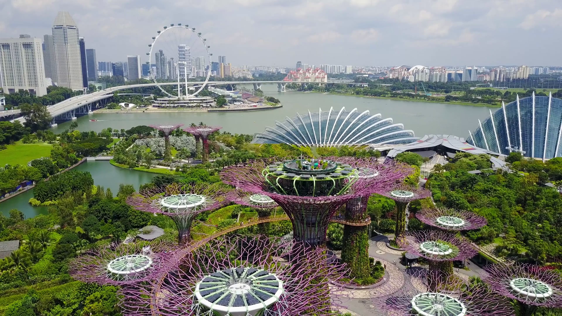 aerial-view-of-the-supertree-grove-at-gardens-by-the-bay-in-singapore_rcc3adoug_thumbnail-full01