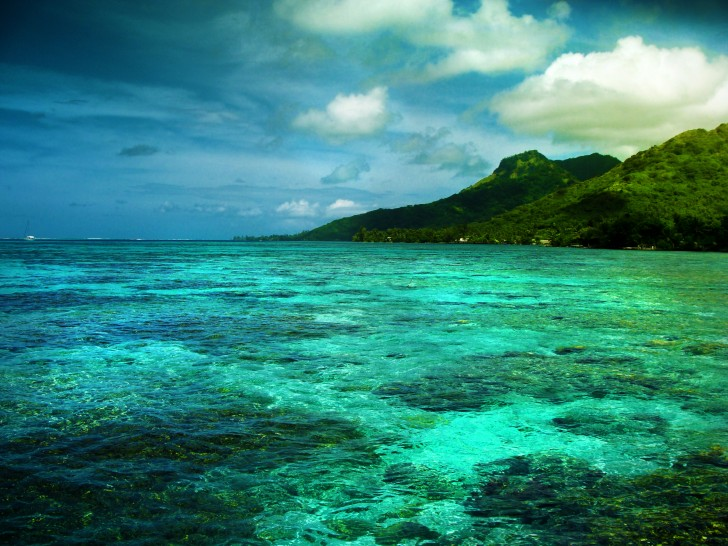 Moorea_French_Polynesia41-728x546